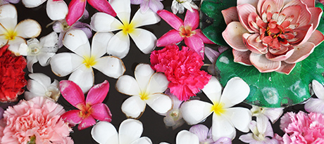 Flower Pool