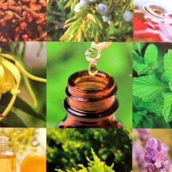 Self Care Aroma School WISH