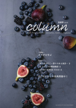 column_81